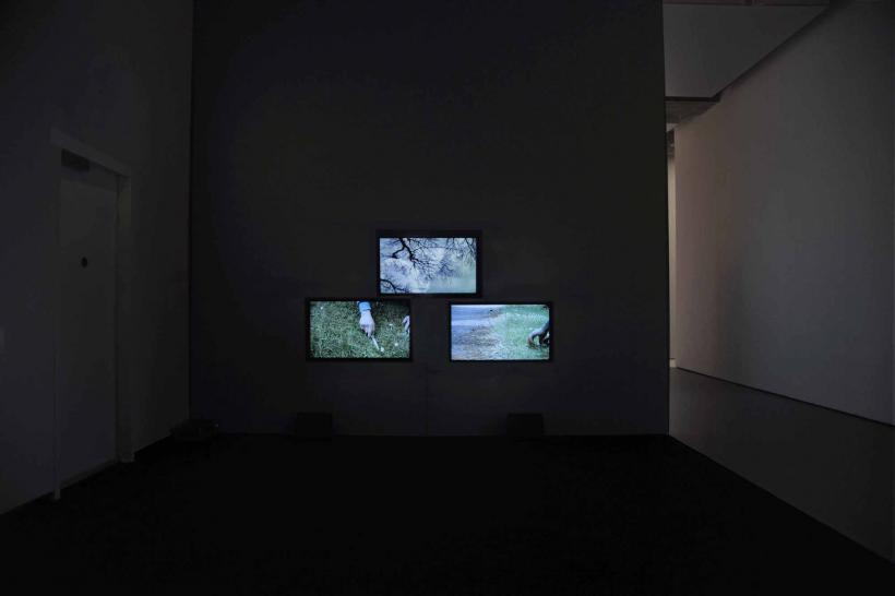 Melanie Manchot, People Places Propositions, installation view, Twelve, 2016