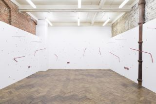 Facelift, Installation View