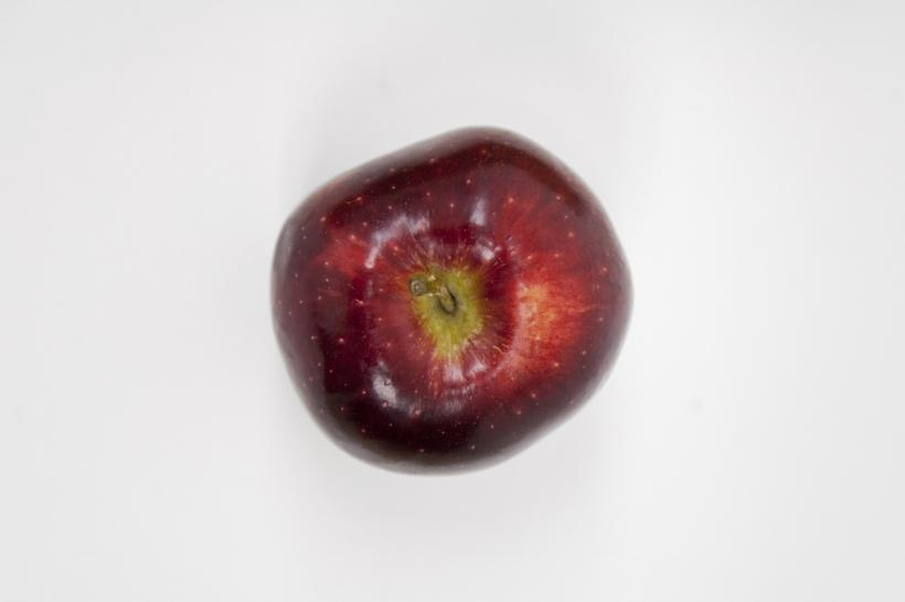 RED APPLES FALLS. 1 intact apple up a wall, two bitten apples on the floor. 2016