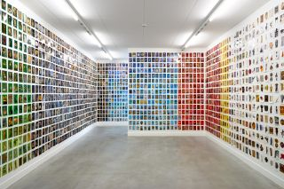 At First Sight, Installation View