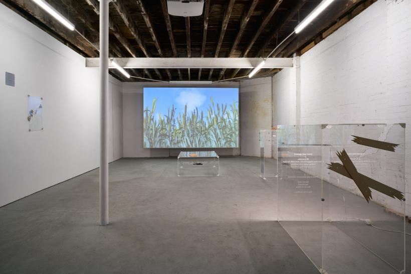 Kitty Clark: HUMANS UNITE, installation view