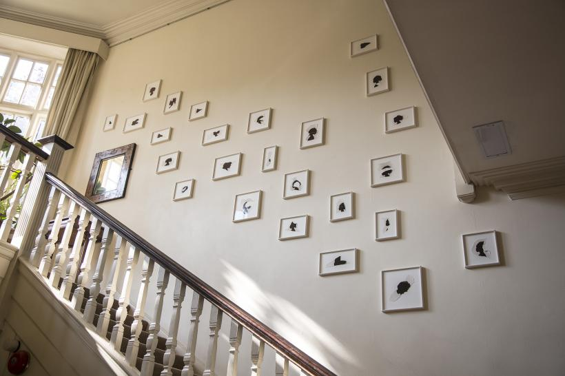 Bettina von Zwehl, Invitation to Frequent the Shadows, Freud Museum, The Sessions, 2016