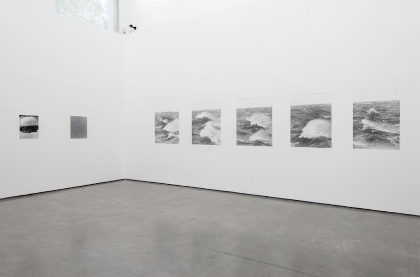 Jochen Lempert, Field Guide, May 7 to July 17, 2016. Contemporary Art Gallery, Vancouver, Canada. Photograph SITE photography