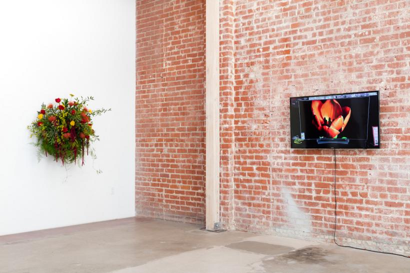Installation view: A Change of Heart, curated by Chris Sharp, Hannah Hoffman Gallery, Los Angeles, 2016