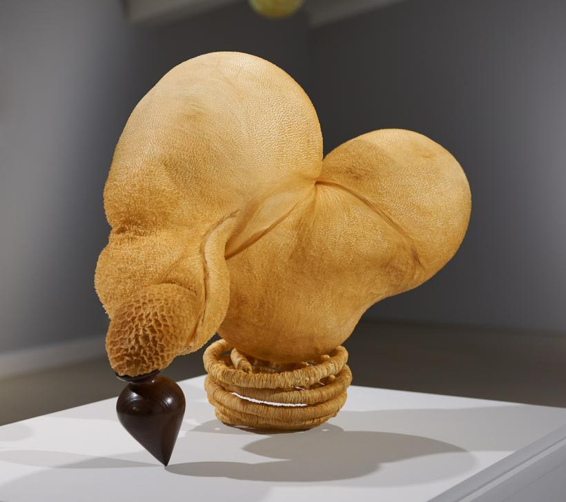 Elpida Hadzi-Vasileva, Beauty Exposed iii, 2016 (sheep stomach, lamb intestine and turned wood)
