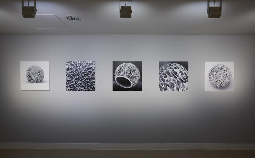 Installation view, Elpida Hadzi-Vasileva, Making Beauty, Djanogly Gallery