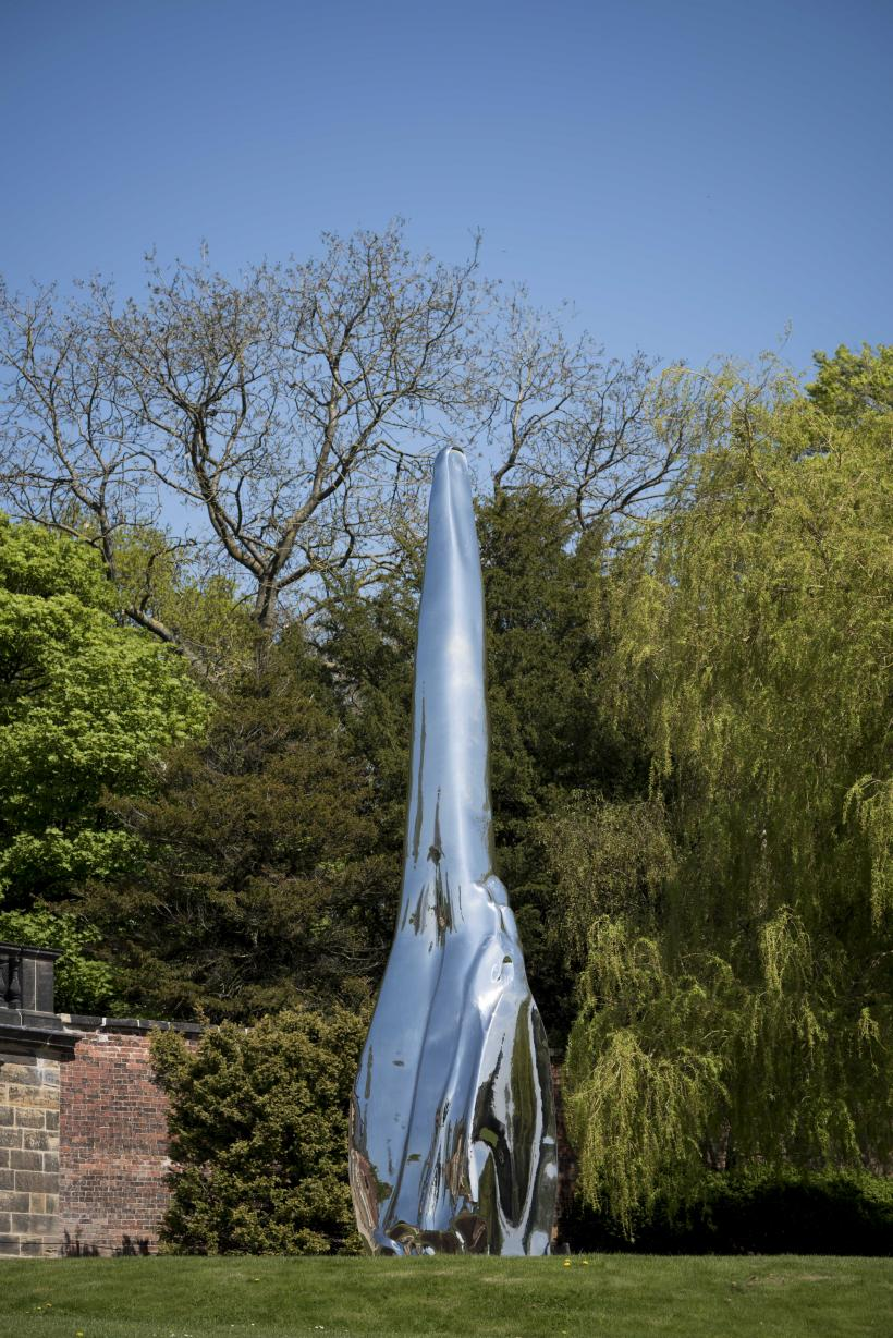 Not Vital, Tongue, 2008. Stainless Steel, 780 x 170 x 150cm. Courtesy the artist and YSP. Photo © Jonty Wilde