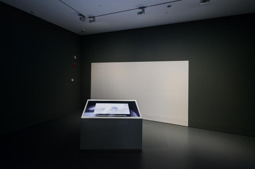 Liu Yefu, Linda, 2016, installation view at Yuz Museum Shanghai
