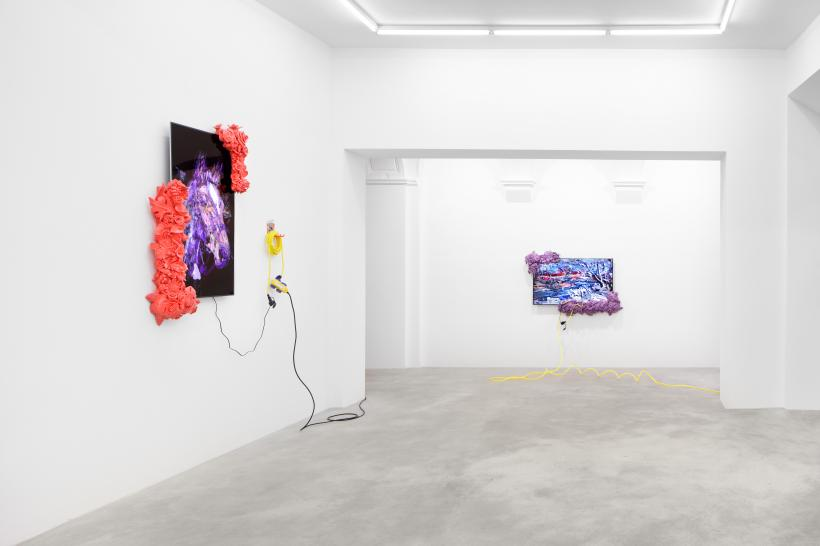 Borna Sammak: No Hanging Out, installation view at Tanya Leighton, 2016
