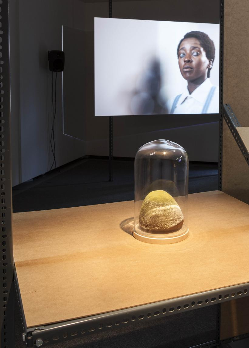 Installation view, Uriel Orlow: Mafavuke's Trial and Other Plant Stories