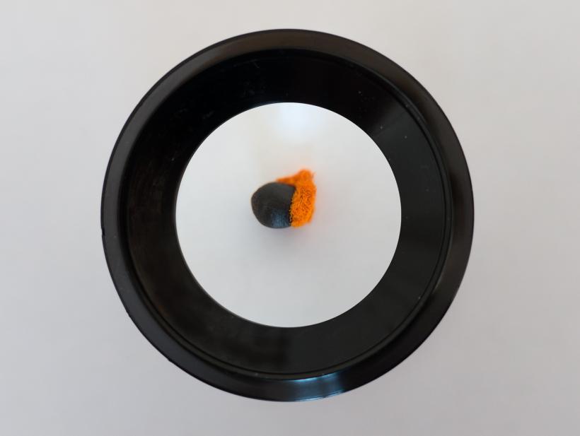 Uriel Orlow, Grey, Green, Gold, 2015-16
