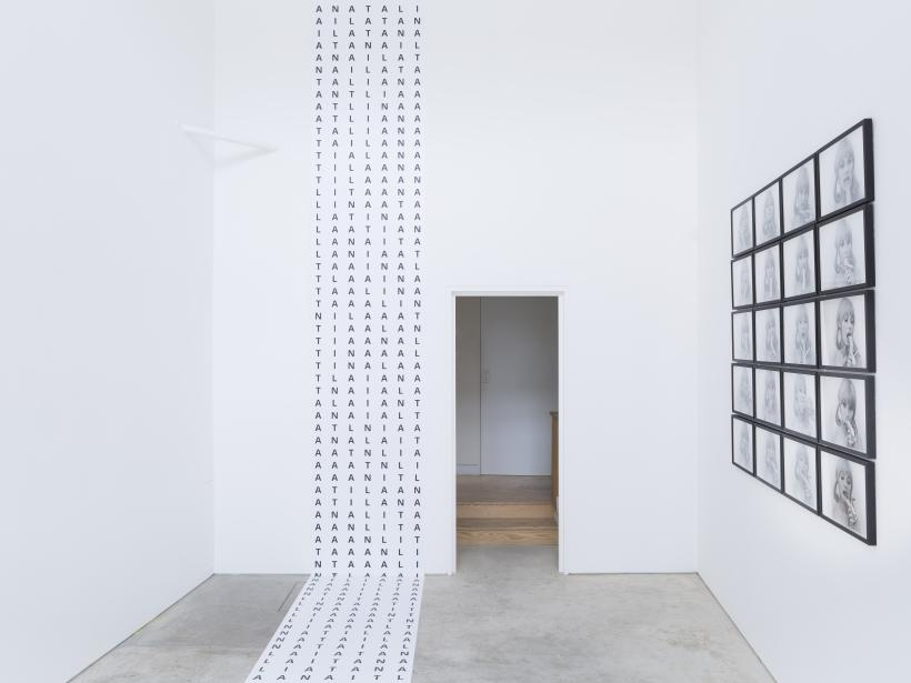 Natalia LL: Probabilities, installation view, Roman Road, London, 4 November 2016-14 January 2017.