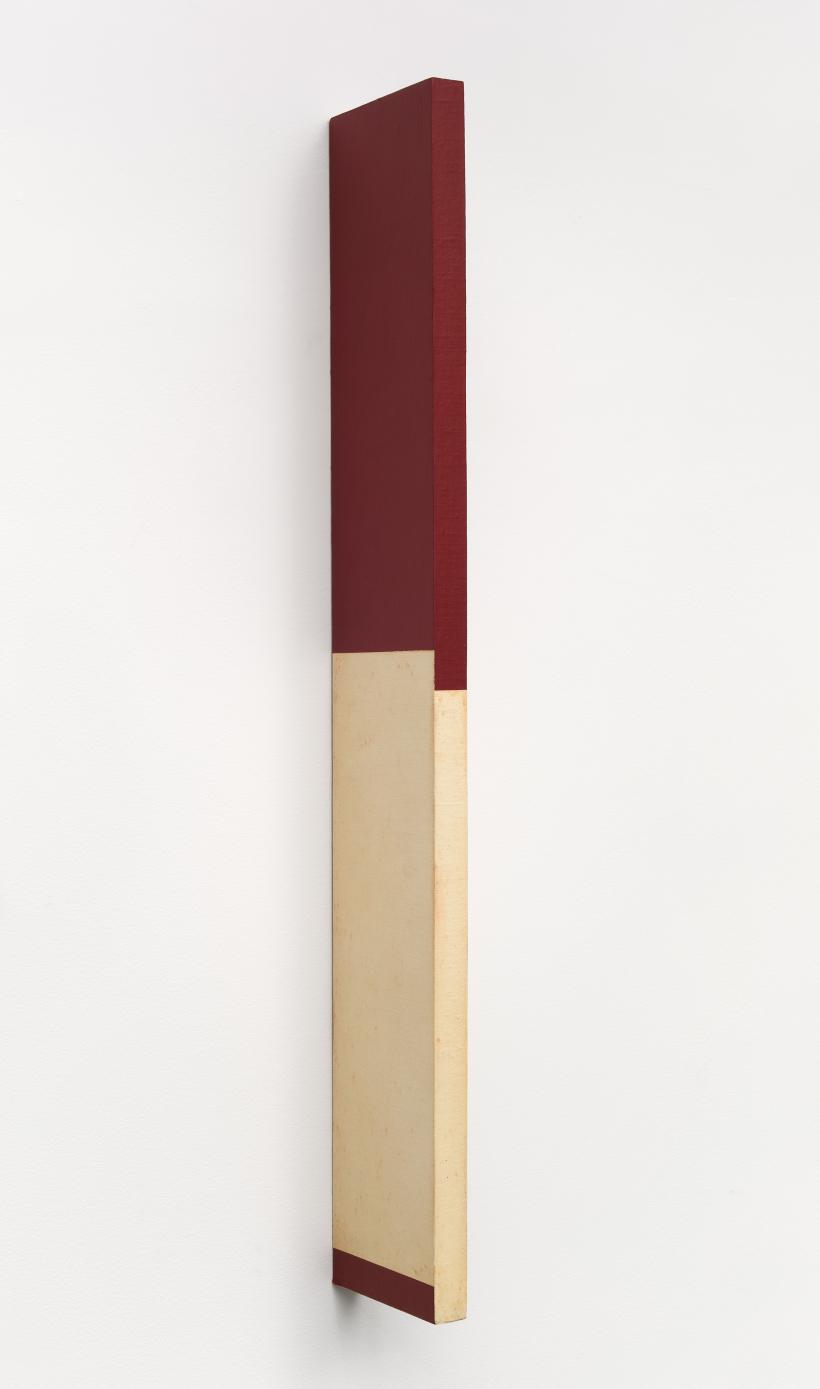 Willys de Castro, Active Object (Objeto Ativo) 1961, canvas over wood, left side view