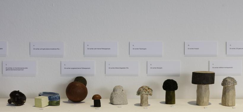 Andrej Polukord, Oft, sehr oft finde ich viele künstliche Pilze (Detail), 2016