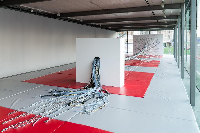 Camille Henrot: If Wishes Were Horses, installation view at Kunsthalle Wien, 2017.
