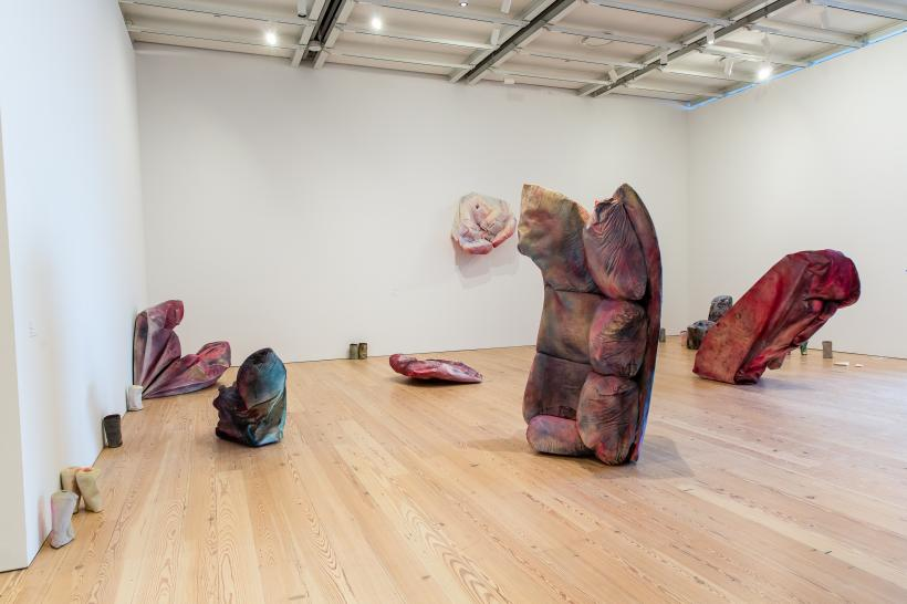 Installation view, Kaari Upson. Whitney Biennial 2017, Whitney Museum of American Art