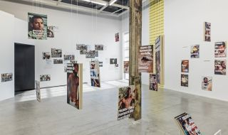 Jonathas de Andrade: On Fishes, Horses and Man, installation view at The Power Plant, Toronto, 2017