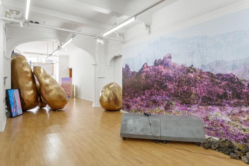 Victoria Lucas, Lay of the Land (and other such myths), installation view at AirSpace Gallery