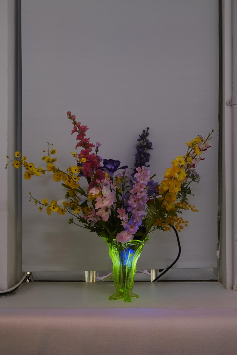 Untitled, 2017, artificial flowers, uv light, dimensions variable
