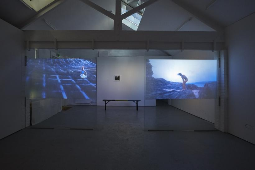 Rory Pilgrim, Software Garden, installation view