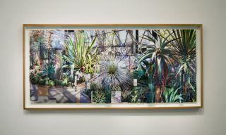 Ji Zhou, Greenhouse 2, 2017, archival pigment print, 110 x 250 cm