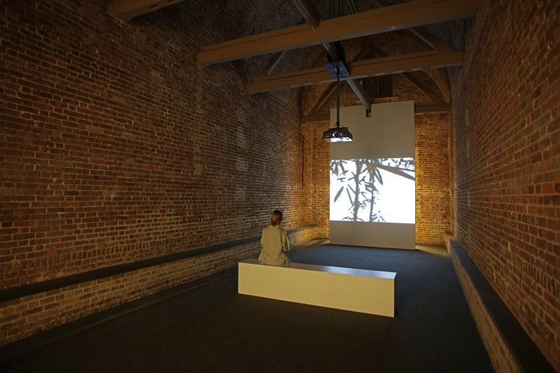 Torbjørn Rødland, Installation view, The Touch That Made You Serpentine Sackler Gallery, London (29 September – 19 November 2017)