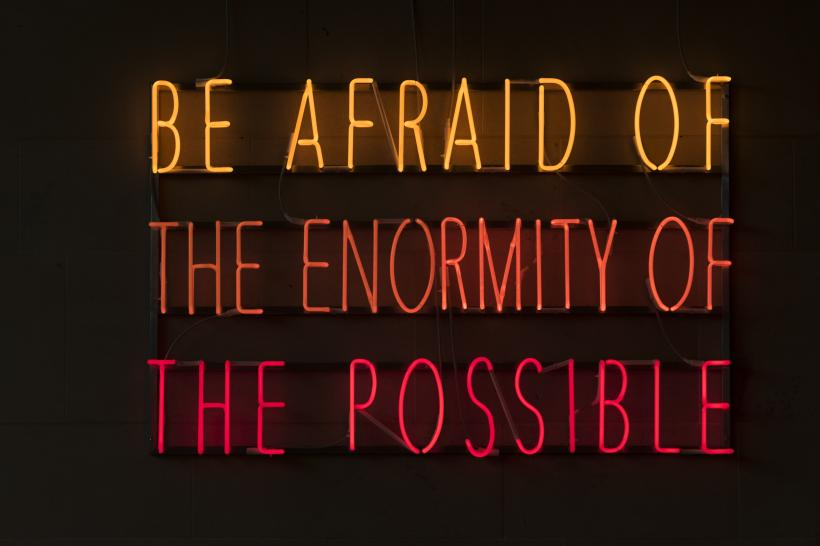 Alfredo Jaar, Be Afraid of the Enormity of the Possible, 2015.