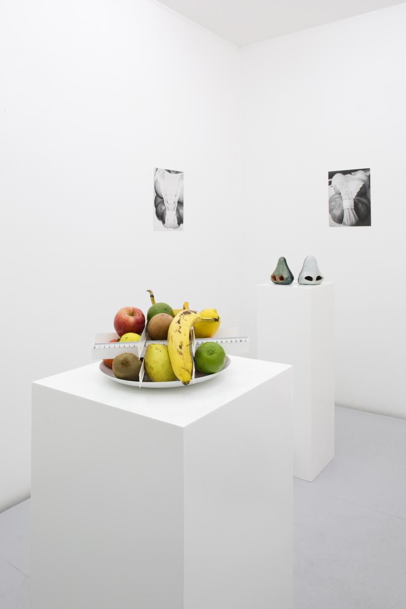 The Lulennial II: A Low-Hanging Fruit curated by Andrew Berardini and Chris Sharp installation view 2018