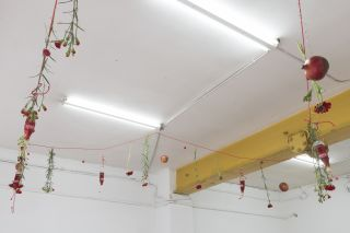 Installation view, Siera Hyte: Honey Week, Cordova Gallery