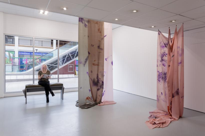 Installation view, Bryony Gillard