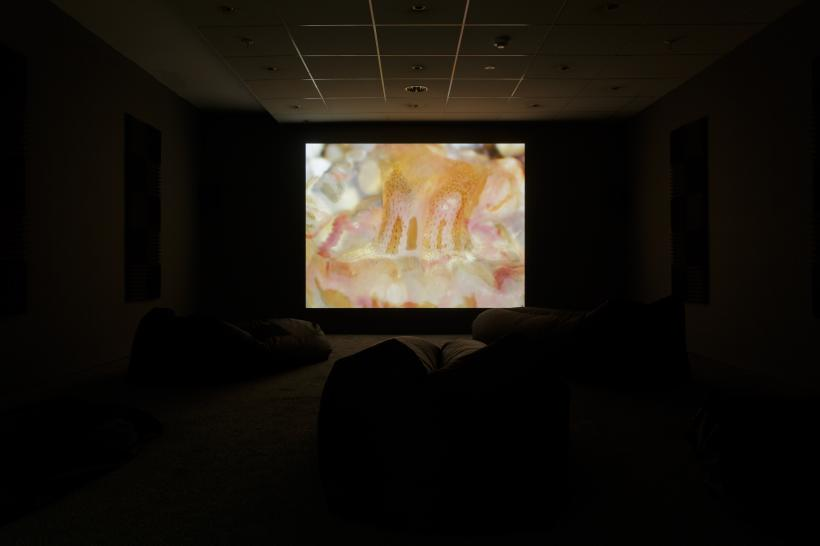 Bryony Gillard, A cap like water, transparent, fluid yet with definite body (2018), H.D digital video 14m 58s, with contributions from Viki Browne, Maggie Nicols, D-M Withers, Danni Spooner and Autobitch