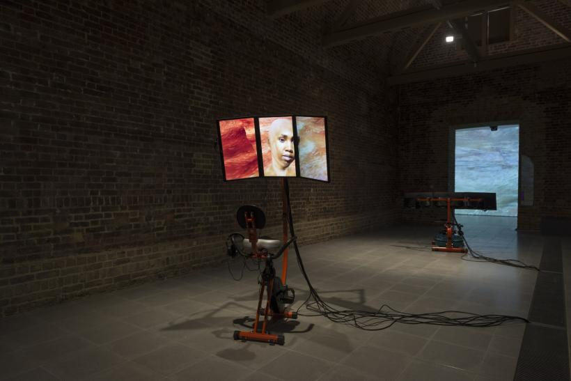 Sondra Perry, Installation view, Typhoon coming on, Serpentine Sackler Gallery, London, 6 March - 20 May 2018