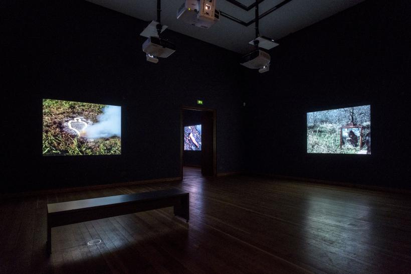 "Exhibition view ""Covered in Time and History: The Films of Ana Mendieta"""
