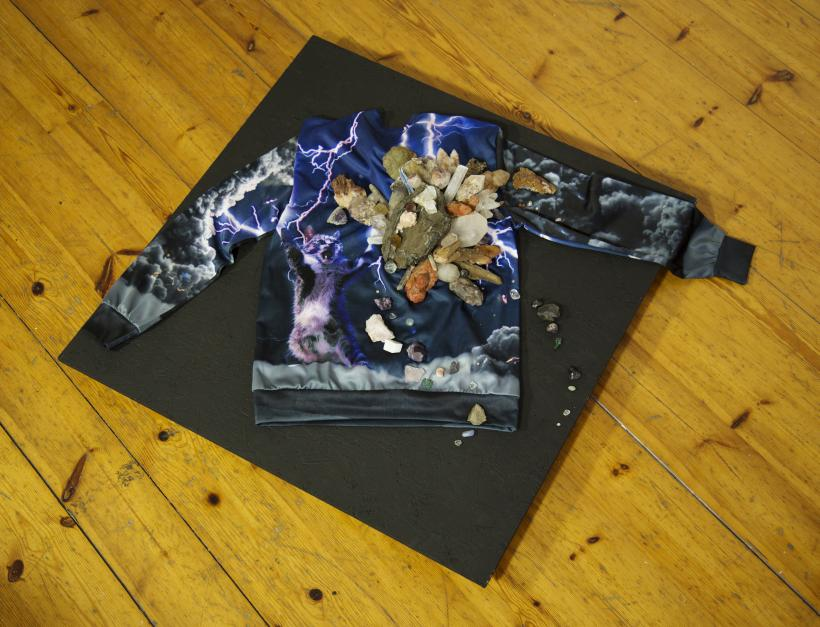 Crystal storm thunder cat hoody
