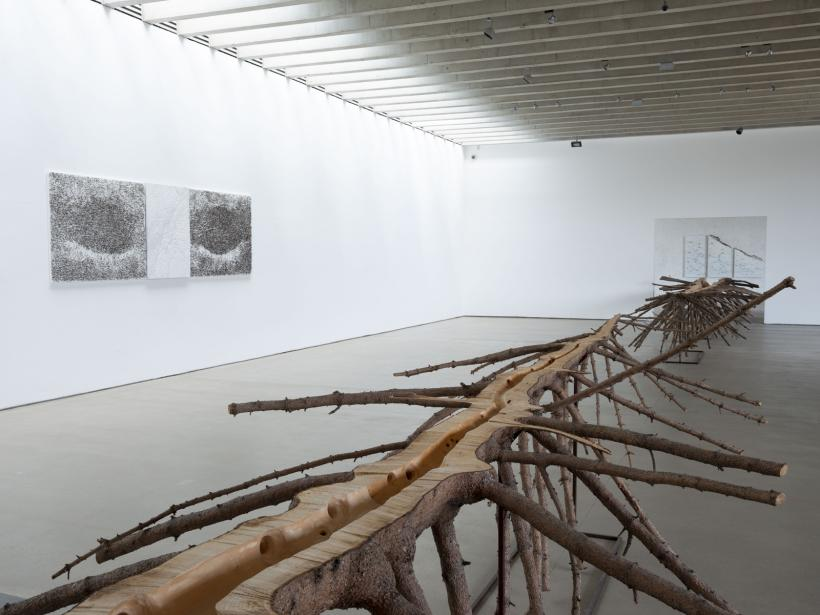 Giuseppe Penone: A Tree in the Wood installation view, 2018