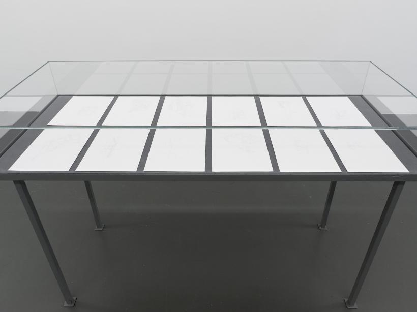 Irene Kopelman, from the series Forest Windows (2012) part of Irene Kopelman, a solo exhibition, Witte de With Center for Contemporary Art 2018