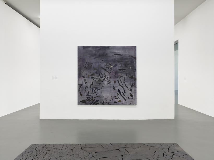 Irene Kopelman, 77 Colors of a Volcanic Landscape A (2016) and Puzzle Piece (2012) part of Irene Kopelman, a solo exhibition, Witte de With Center for Contemporary Art 2018