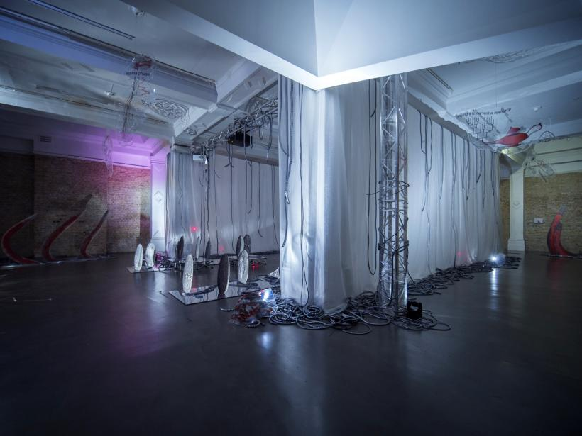 Installation Image of Katja Novitskova: Invasion Curves at Whitechapel Gallery