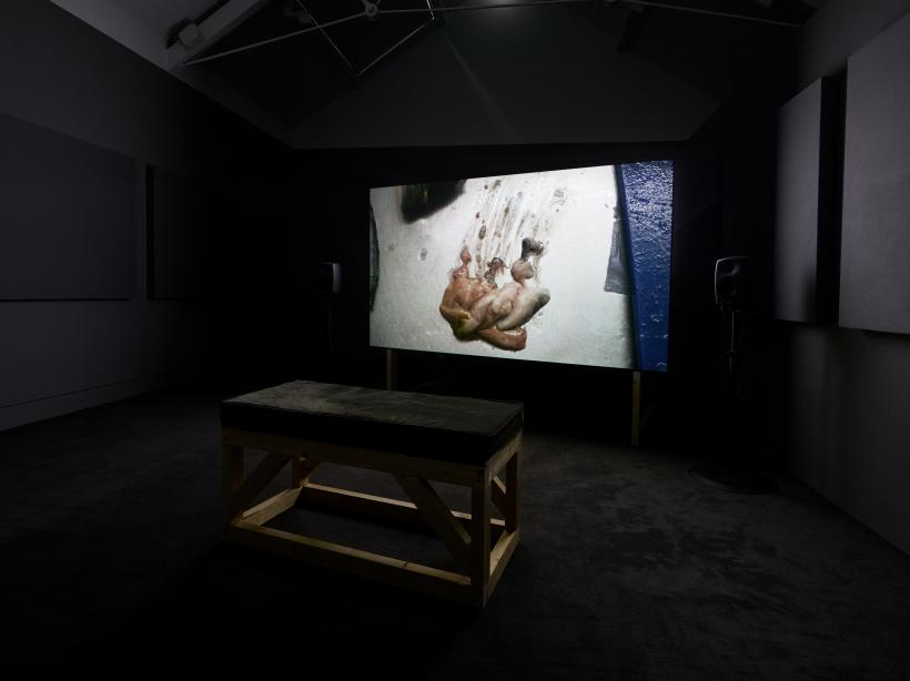 Georgia Horgan, Dear Barb, 2018. Installation view at Jerwood Space. Commissioned for Jerwood Solo Presentations 2018, supported by Jerwood Charitable Foundation. Image: Anna Arca