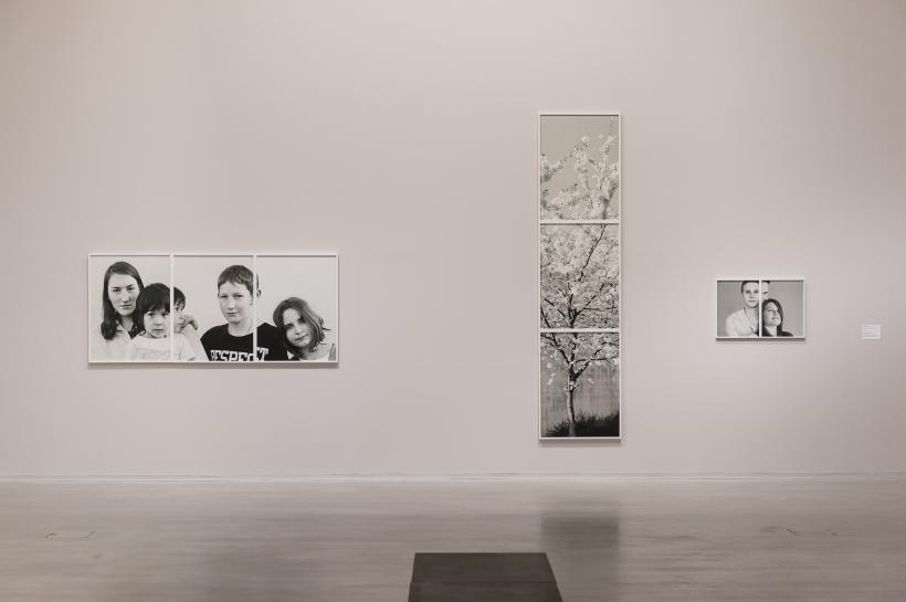 Loredana Nemes. Serie Blutezeit, 2012