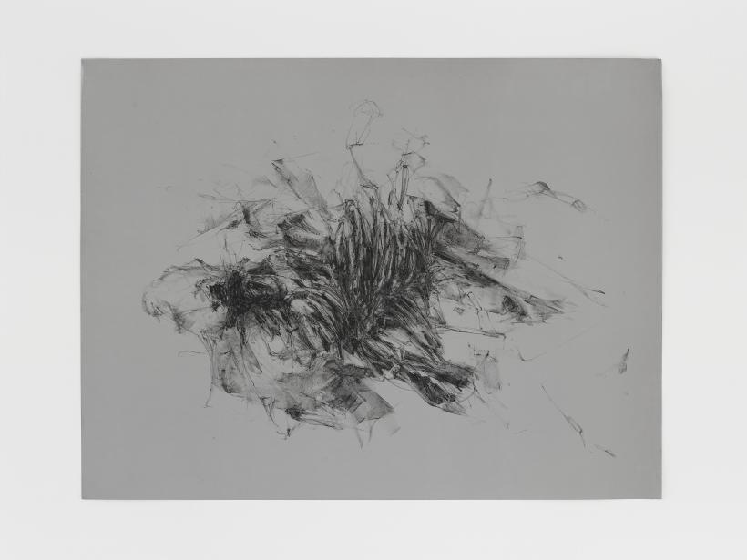 Christine Ay Tjoe, Always Floating In A Constant Distance 17, 2018, Lithographic crayon on aluminium, 17 1/2 x 23 1/8 x 0 1/8 in.