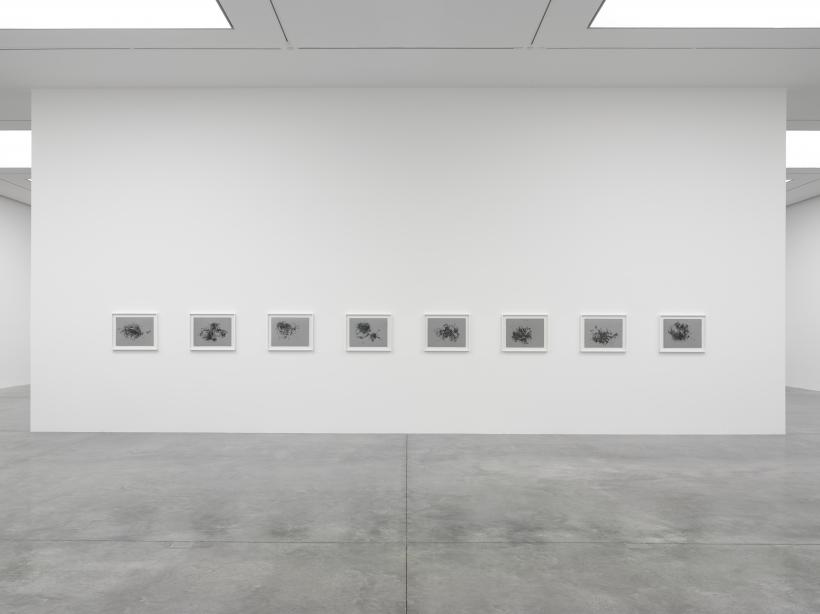 Christine Ay Tjoe, Black, kcalB, Black, kcalB, White Cube Bermondsey, 28 November 2018 - 20 January 2019