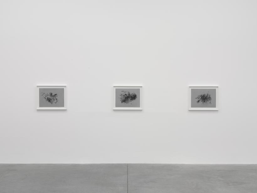 Christine Ay Tjoe, Black, kcalB, Black, kcalB, White Cube Bermondsey, 28 November 2018 - 20 January 2019