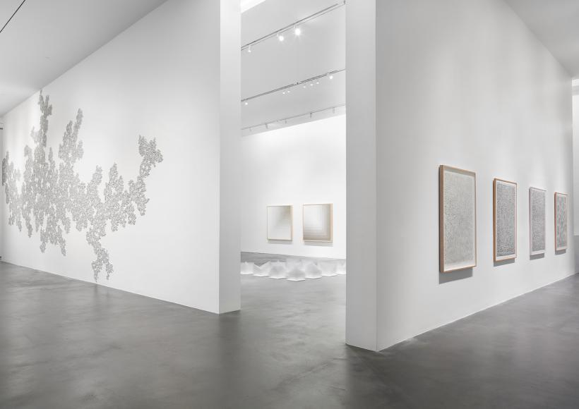 Installation view, Tara Donovan: Fieldwork