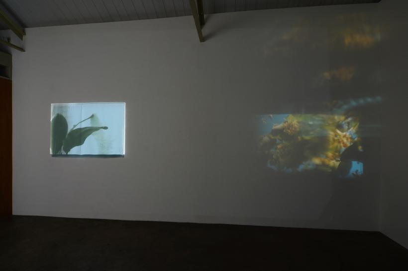 Banal: Installation view