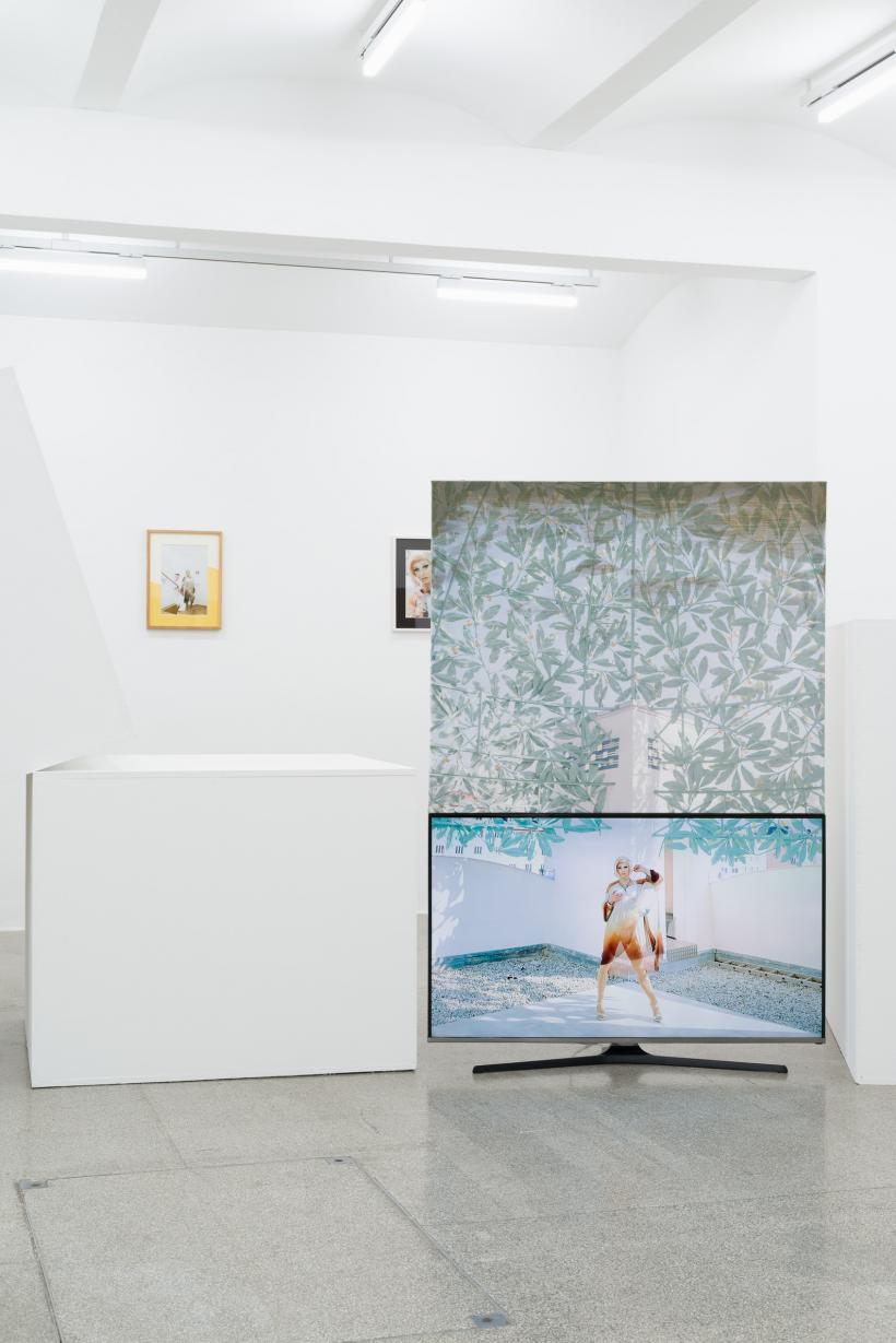 Philipp Timischl, Artworks For All Age Groups, exhibition view Secession 2018