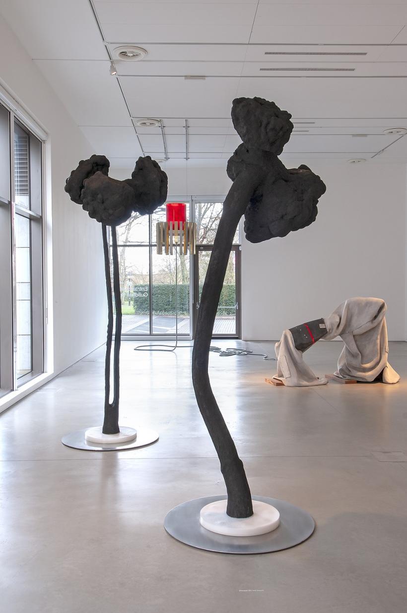 Siobhan Hapaska, installation view, John Hansard Gallery, 2019