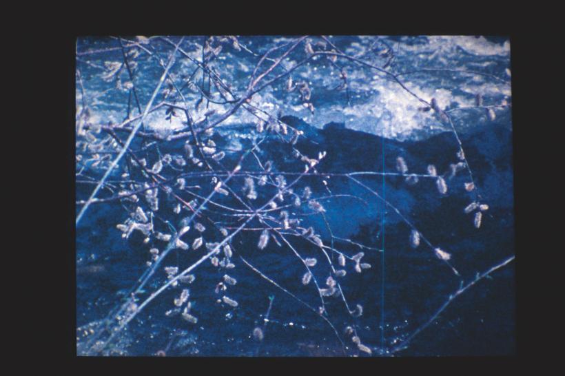 Agnes Martin, Gabriel, 1976