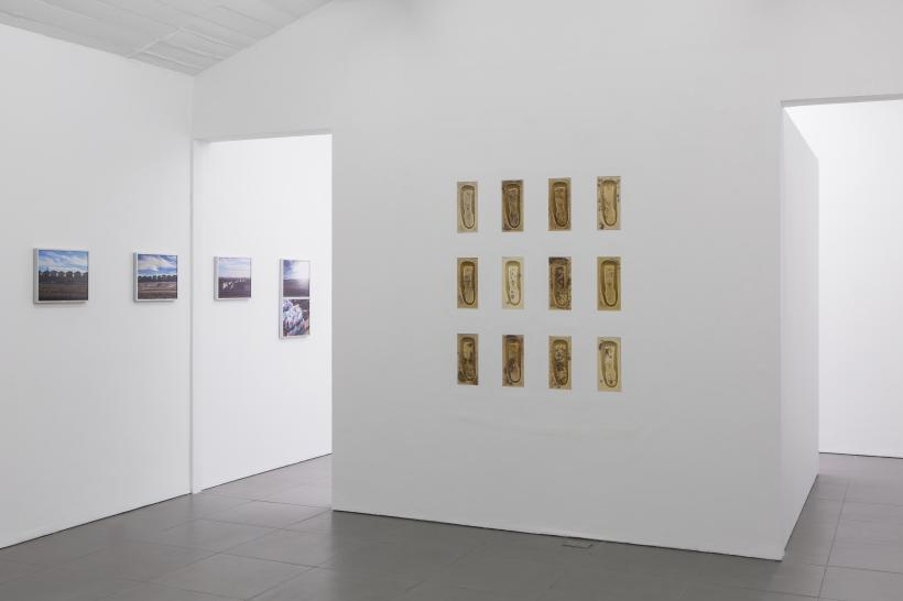 Joins, Installation View, 2019, Rosa Aiello and Patricia L. Boyd