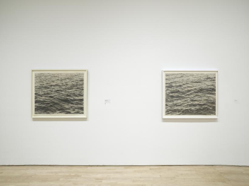 Vija Celmins: To Fix the Image in Memory, 2018 (installation view, SFMOMA)